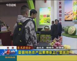 【聚焦果博会】夏县特色农产品果博会上广受关注