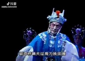 王艺华老师《狸猫换太子》选段