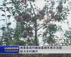 【乡村振兴进行时】闻喜县翁村建设富硒苹果示范园助力乡村振兴