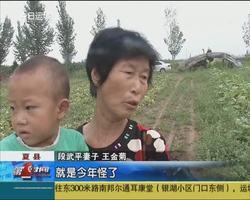夏县:西葫芦长胖了销售难 究竟什么原因