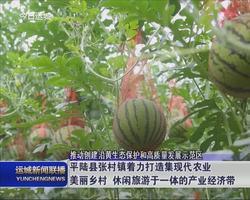 平陆县张村镇着力打造及现代农业美丽乡村 休闲旅游于一体的产业经济带